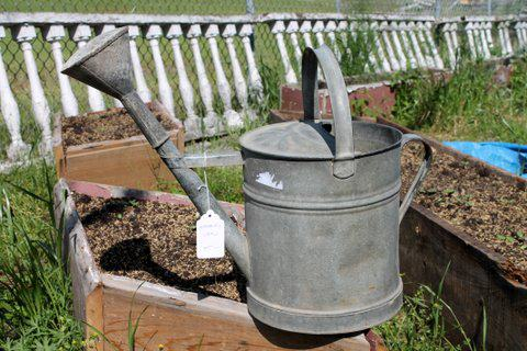 This vintage metal watering can will add old-fashioned charm to your garden. Dimensions: 10